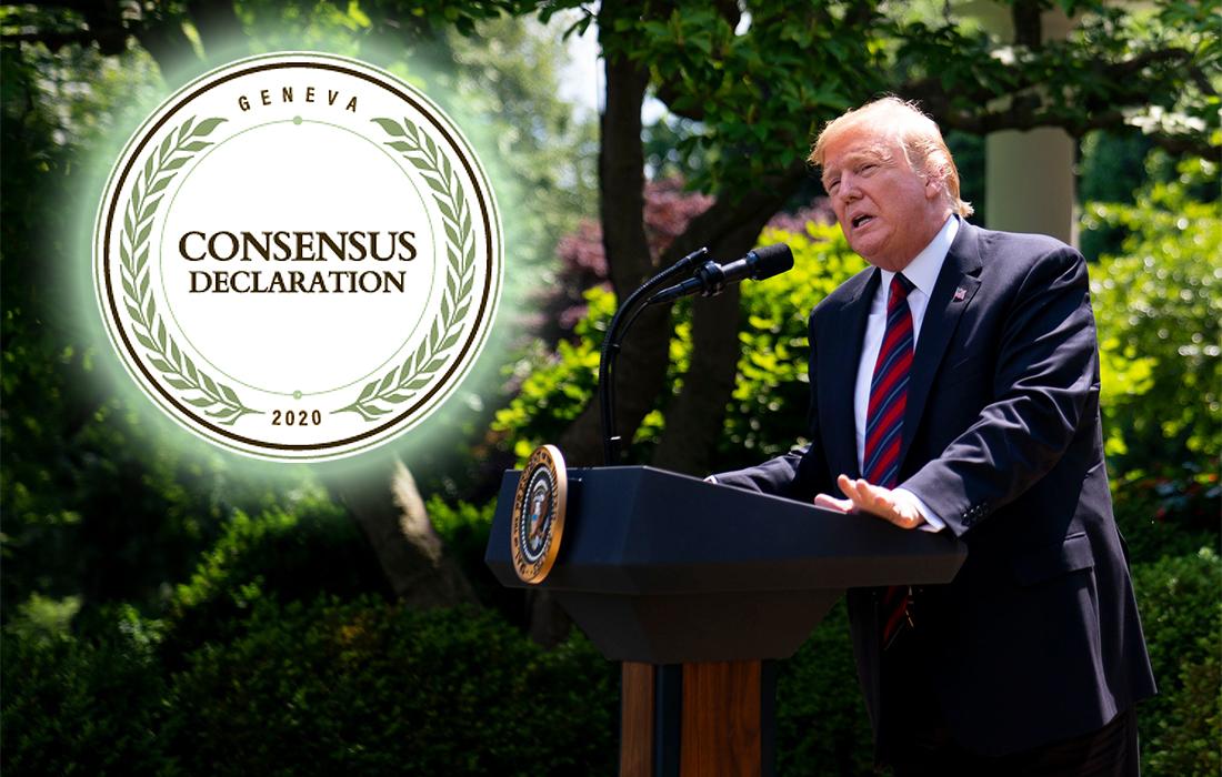 Commentary: The Geneva Consensus Declaration